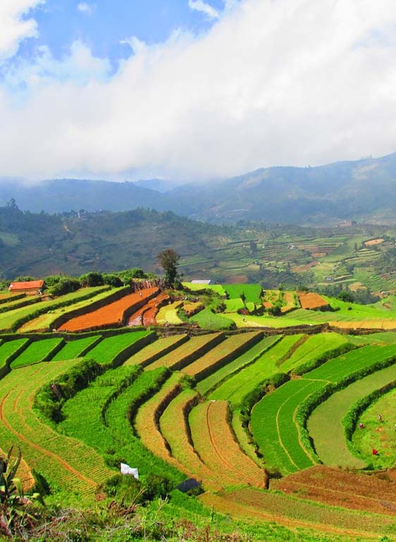 kodaikanal village tour